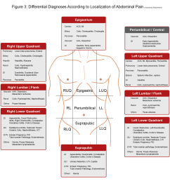abdominal pain differential diagnosis according to localization of abdominal pain abdominal pain can originate from [ 2208 x 2181 Pixel ]