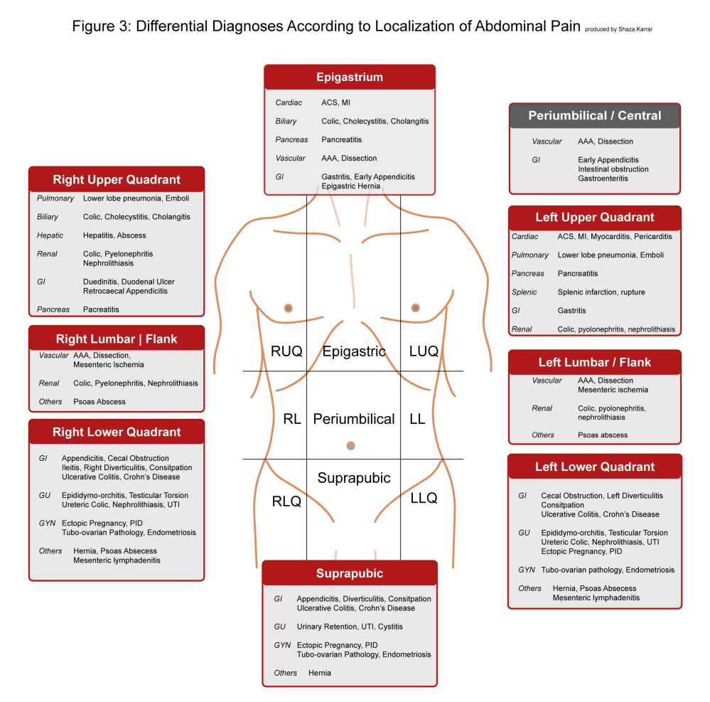 medium resolution of abdominal pain differential diagnosis according to localization of abdominal pain abdominal pain can originate from