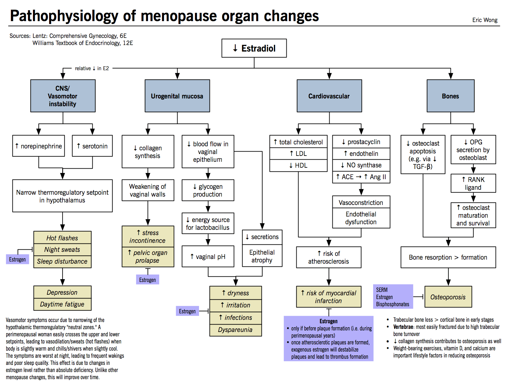 Pathophysiology Of Menopause Organ System Changes