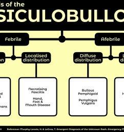 algorithm for diagnosis of the vesiculobullous rash febrile diffuse distribution varicella smallpox [ 1200 x 848 Pixel ]