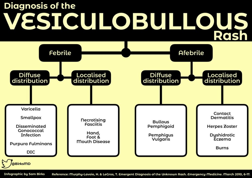 medium resolution of algorithm for diagnosis of the vesiculobullous rash febrile diffuse distribution varicella smallpox
