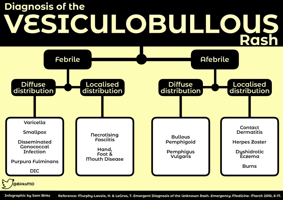 hight resolution of algorithm for diagnosis of the vesiculobullous rash febrile diffuse distribution varicella smallpox