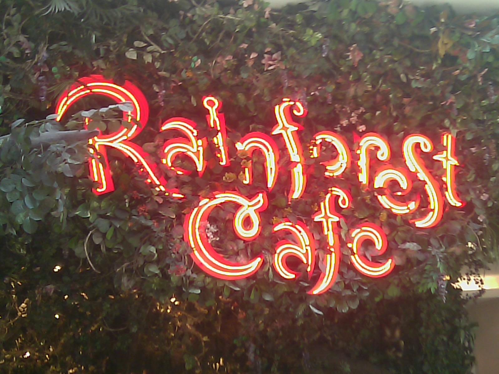 Rainforest Rainforest Cafe Locations