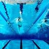 Ingressi open palestra e piscina  Gate Sport Muggiano  Groupon