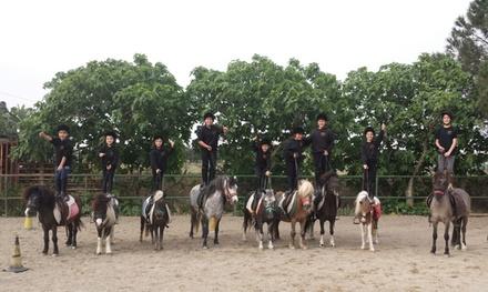 3 o 5 lezioni di equitazione per bambini da 60 minuti da Cavalieri di S.Efisio (sconto fino a 60%)