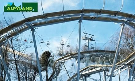 2, 4 o 6 discese con Alpin Coaster   Brivido e panorami mozzafiato sui laghi, al parco Alpyland in zona Mottarone