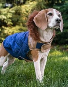 also eddie bauer medium sized fur trim hooded coat groupon rh