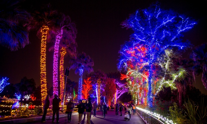 Zoo Lights Phoenix Groupon
