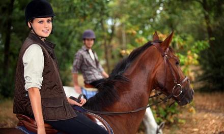 Passeggiata a cavallo in montagna o al mare presso il Ristorante Pizzeria Il Maneggio (sconto fino a 64%)