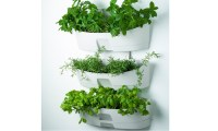 Decorative Garden + Wall Planter   Groupon Goods