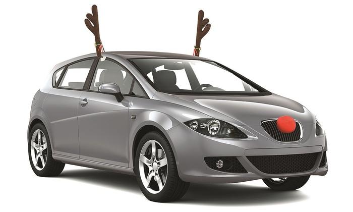 Reindeer Car Decoration Set