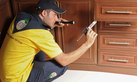 Pest Control for Up to Five Rooms with Engineering Techniques Services (Up to 63% Off)