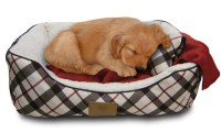 American Kennel Club Dog-Bed Gift Set | Groupon