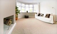 Carpeting Whole House  Floor Matttroy