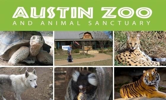 Austin Zoo  Austin TX  Groupon