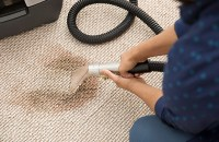 Professional Carpet Cleaning: What to Know Before You Book