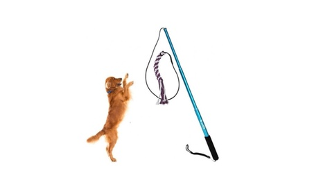 Dog Toy Dog Outdoor Play Fun Interactive Chasing Teaser and Exerciser