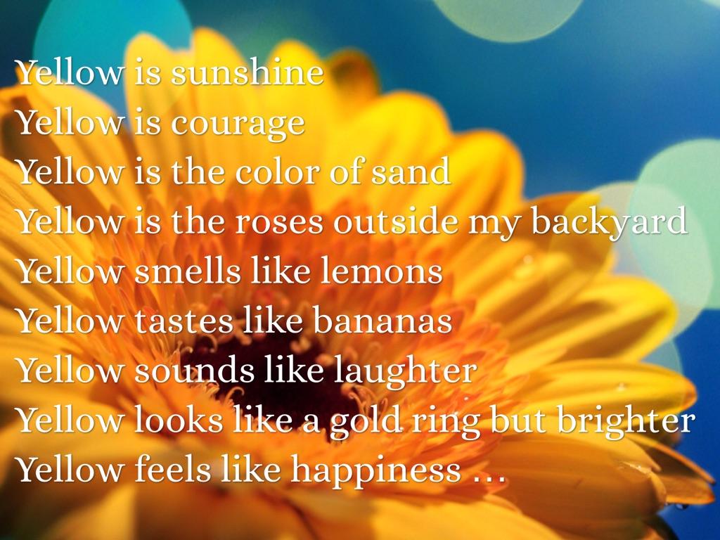 My Poetry Book By Sophia Boyce