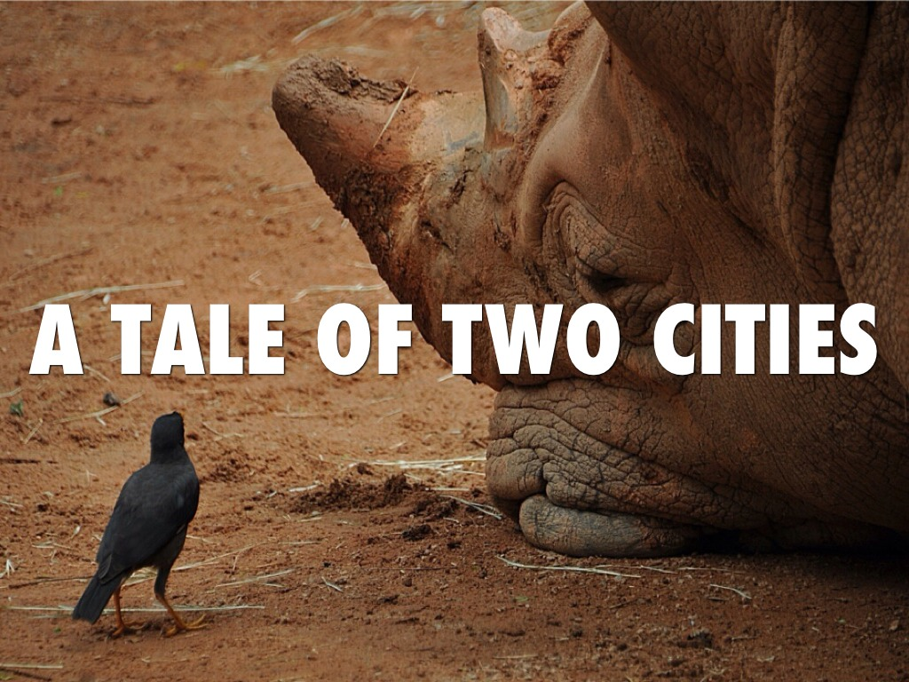 A Tale Of Two Cities By Richard Meng