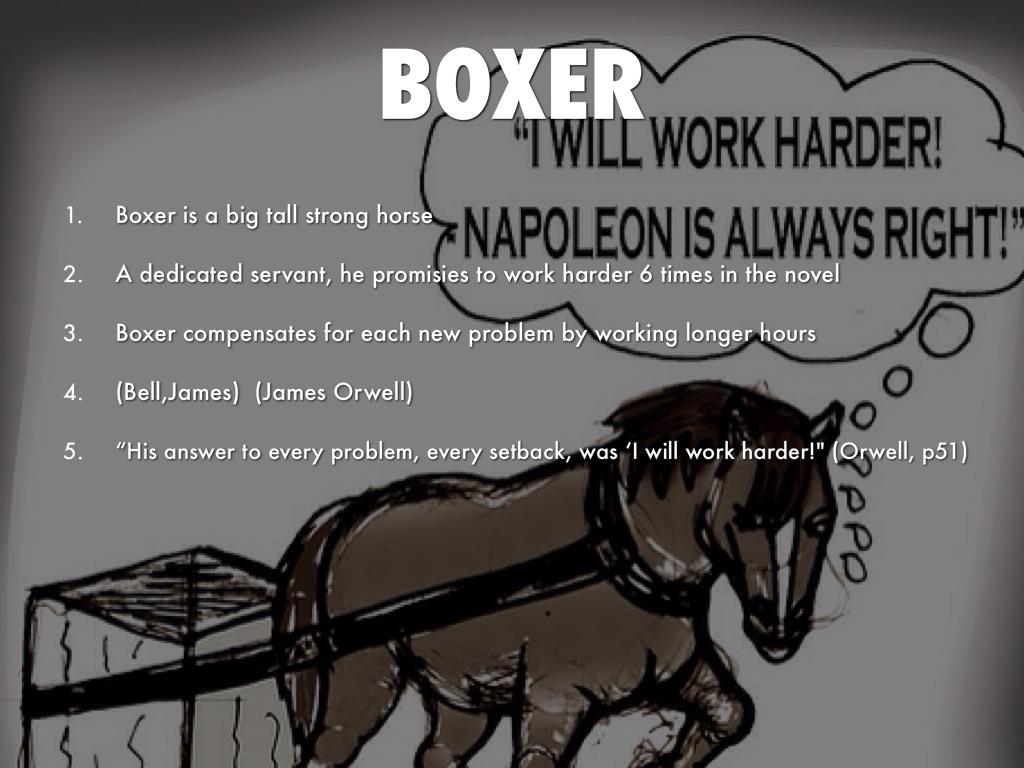 Animal Farm Quotes Animal Farm Boxer Quotes Picture