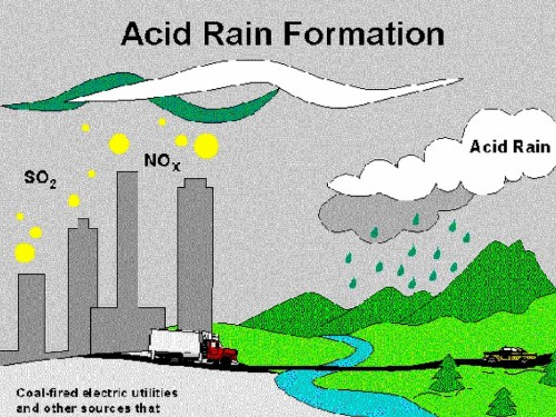small resolution of the main reason why this happens is because of human activities we release so many different chemicals that create acid rain