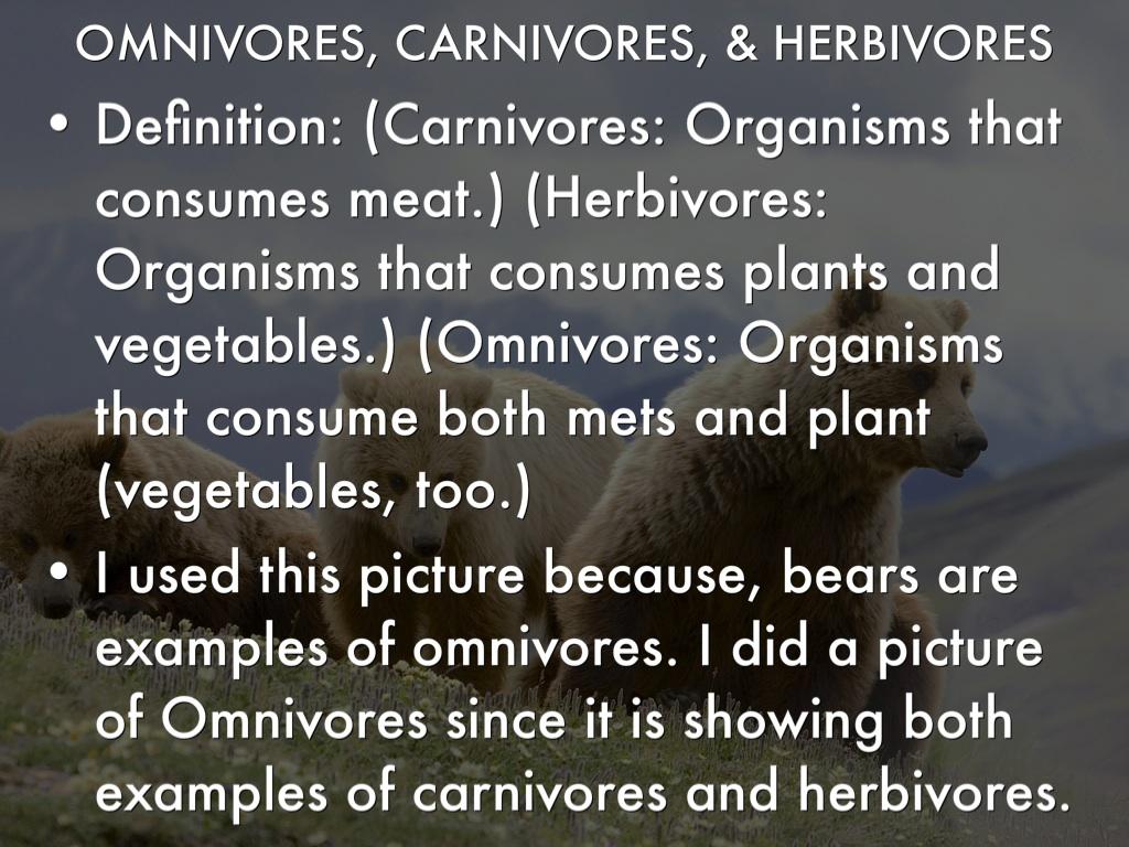 Science Vocabulary By Carina Albrecht