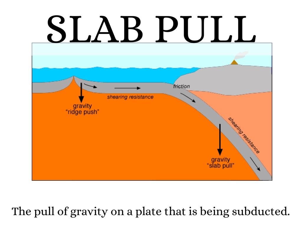 convergent boundary diagram snow leopard anatomy plate system
