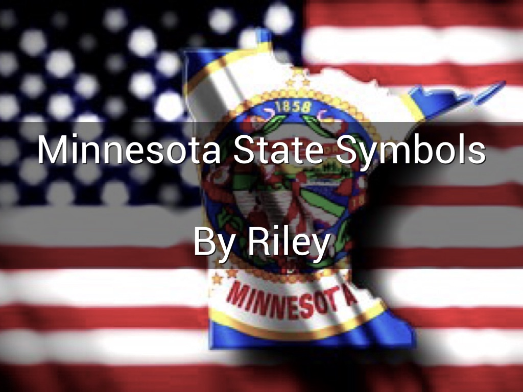 Minnesota State Symbols By Riley Muenchow