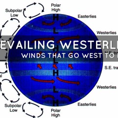 Global Wind Patterns Diagram Bird Bone Structure Coriolis Effect Convection Elsavadorla