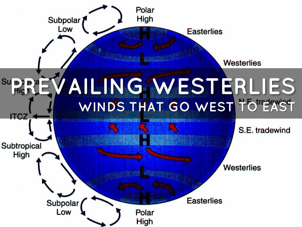 hight resolution of prevailing westerlies
