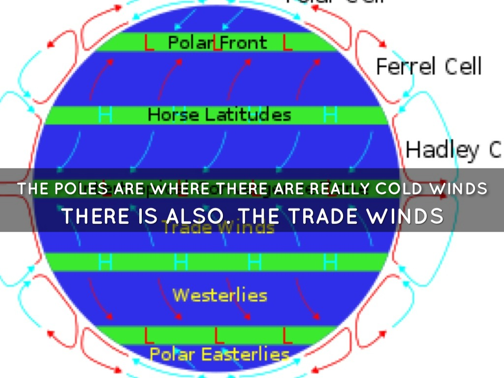 hight resolution of the polar easterlies