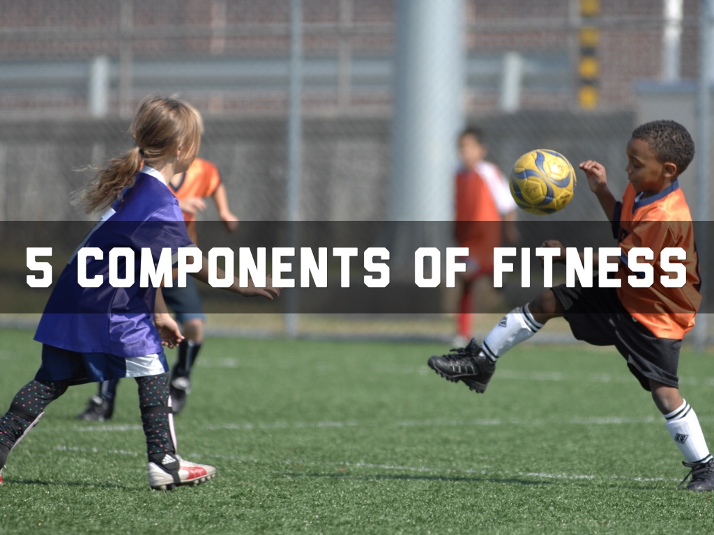 5 Components Of Fitness By Ammar Khan