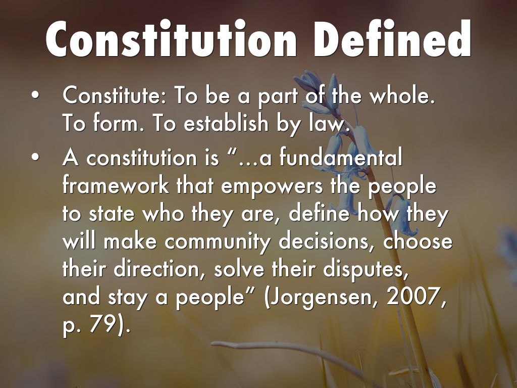 Feds  Constitution Why  What by Amy Gould