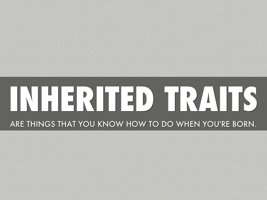 Inherited Traits Vs Learned Traits By Kelsea Burke