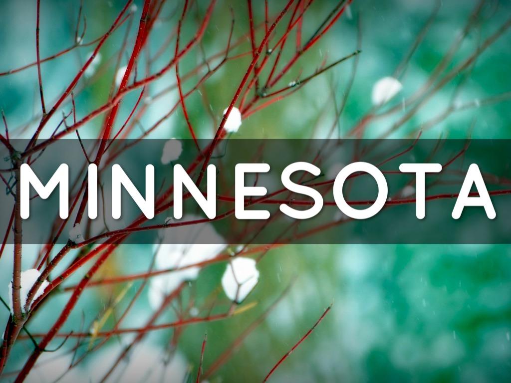 Minnesota S State Symbols By Dayanderson
