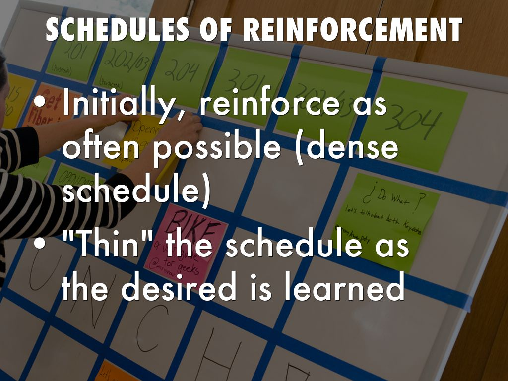 Copy Of Reinforcement By Karen Neifer
