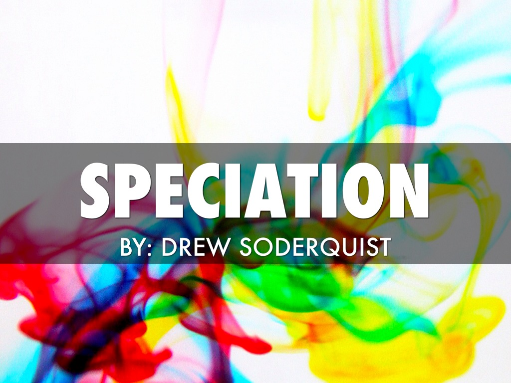 5 Soderquistdrew Evolutionspeciationreview By Holly