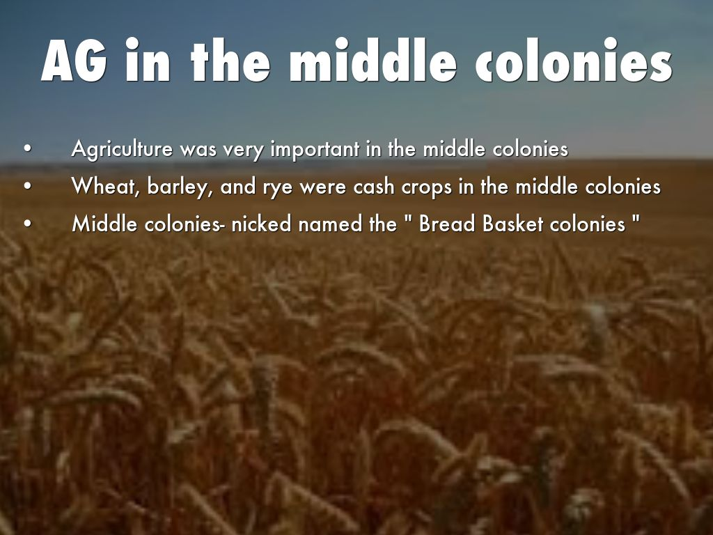 Middle Colonies Education