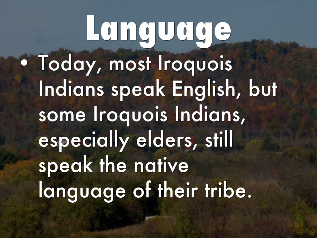 Iroquois Indian Tribe By Zegubj