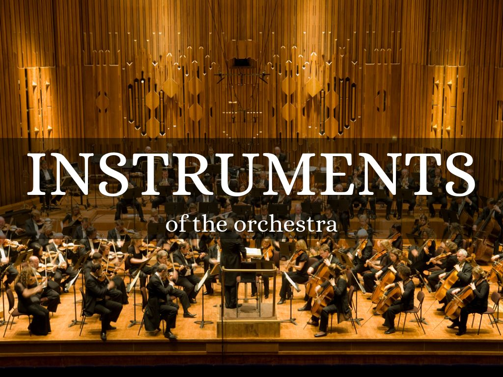 Instruments Of The Orchestra By Chloedonis