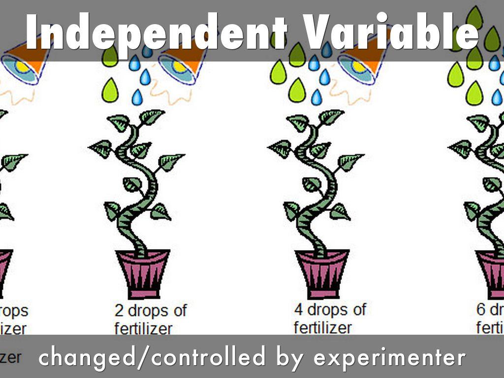 Biology Vocab By