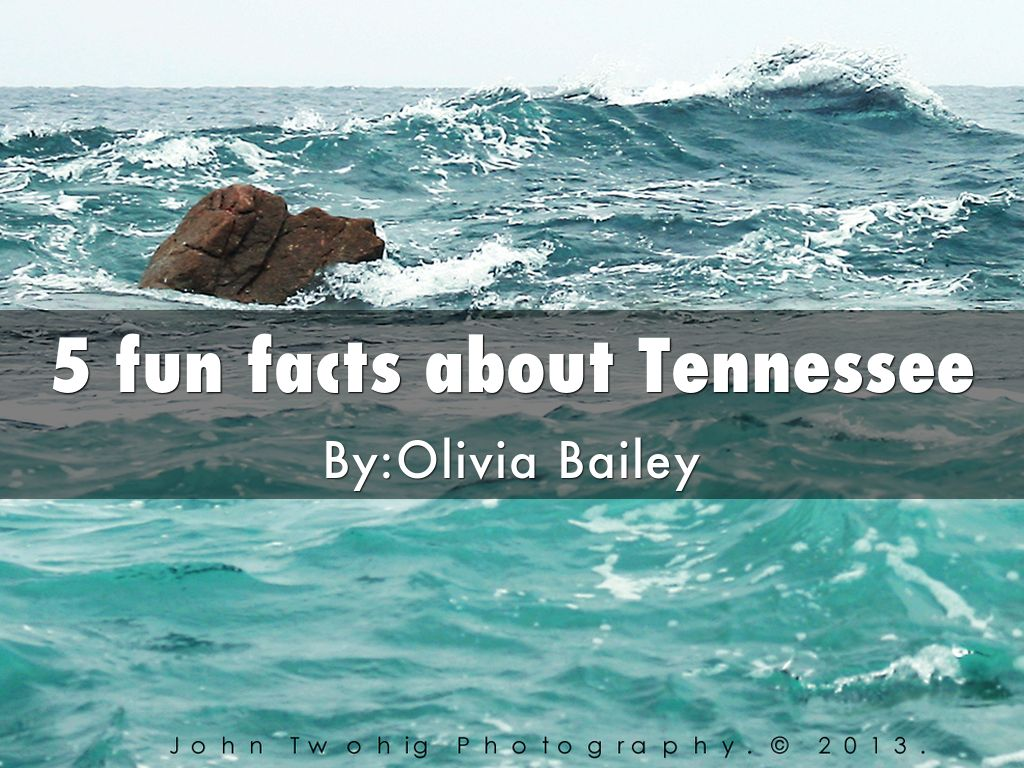 5 Fun Facts About Tennessee By Ob