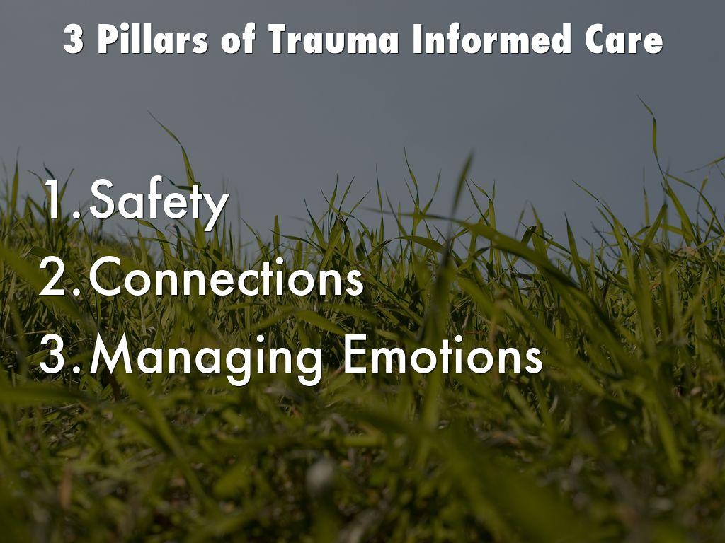 Trauma Brain Development And Tbri By Joyce Carter