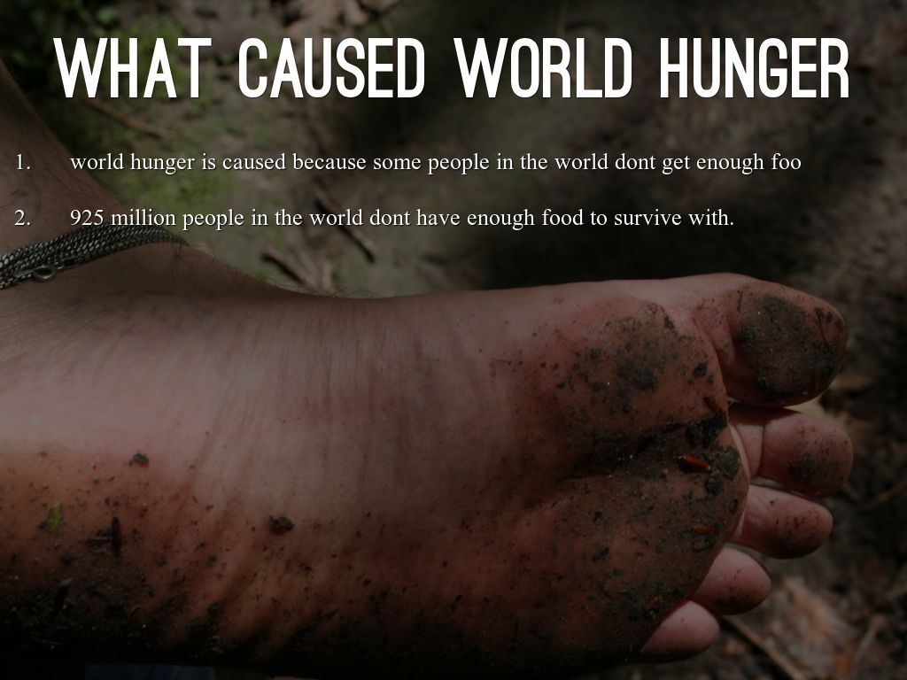World Hunger By 21lleea