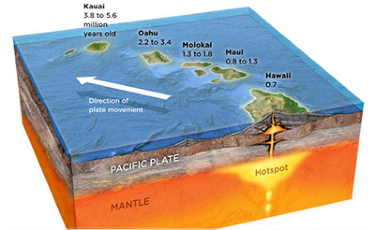 Galapogos Island Worksheet