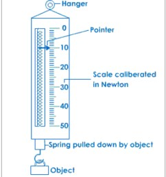 spring scale by lauren petersilia diagram of spring scale [ 1124 x 1302 Pixel ]