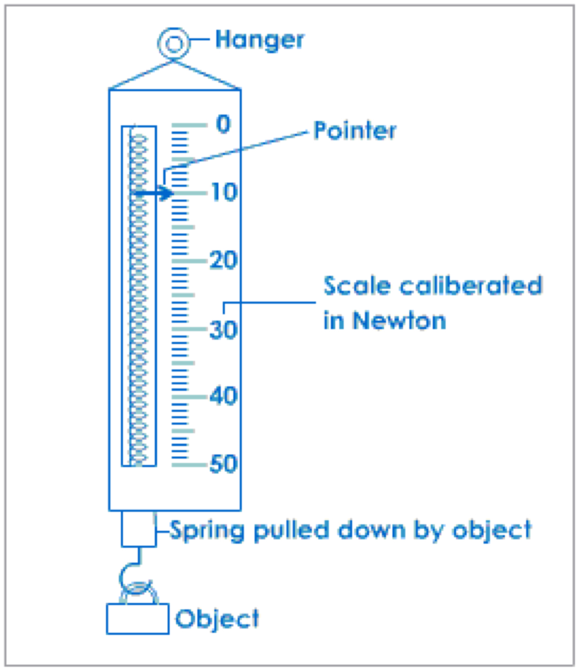 hight resolution of spring scale by lauren petersilia diagram of spring scale