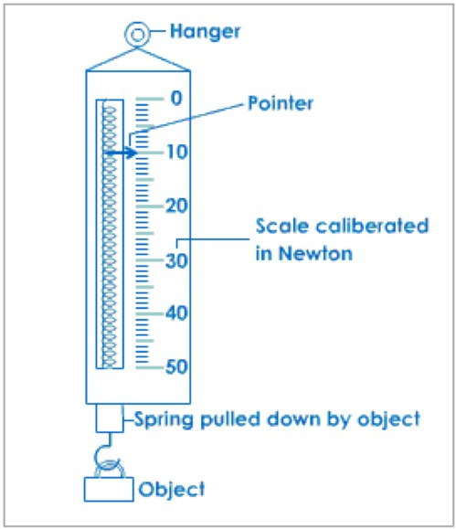 small resolution of spring scale by lauren petersilia diagram of spring scale