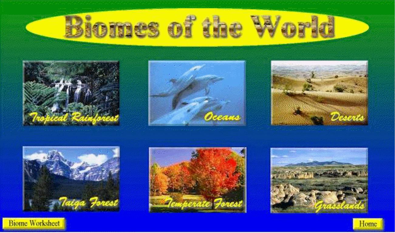 hight resolution of Biomes by Regina Villanueva