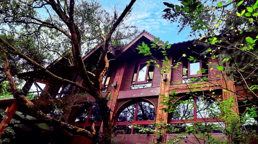 苗栗景觀餐廳/三義綠葉方舟,百年土地公庇佑的山林期待著下個十七
